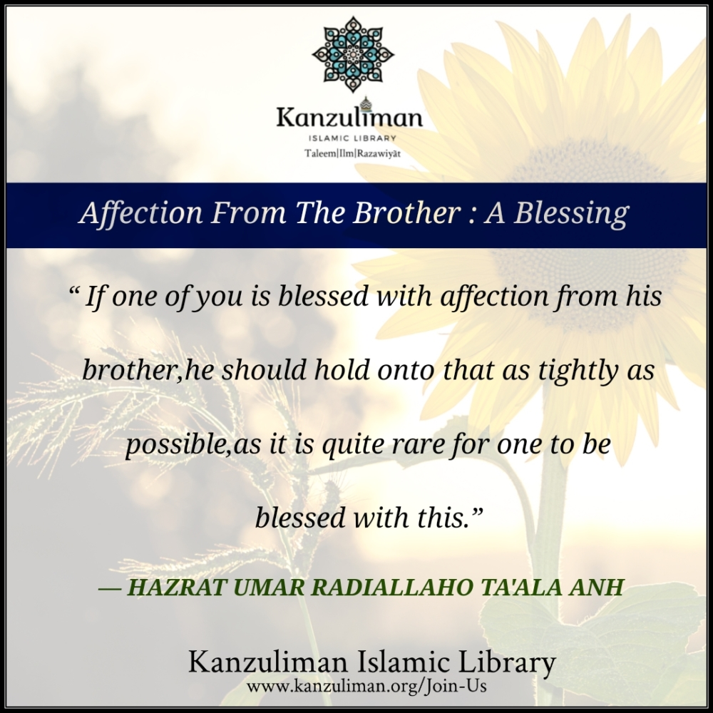 Affection from the Brother: A Blessing_kanzuliman